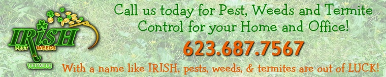 Irish Pest Weed Termite Control - Surprise, Phoenix, Arizona