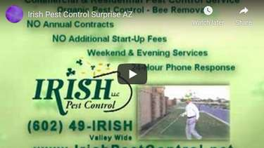 Irish Pest Control and Termite Service Video Review